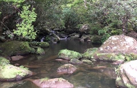 瞑想するならサンガラの滝